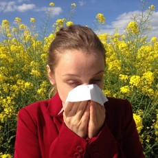 How CBD can help with a pollen allergy