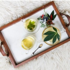CBD oil experiences from practice